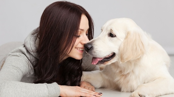 Must Haves For Renters In Pet Friendly Apartments